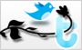 Botones para Twitter