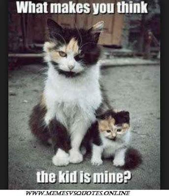 this kid is mine