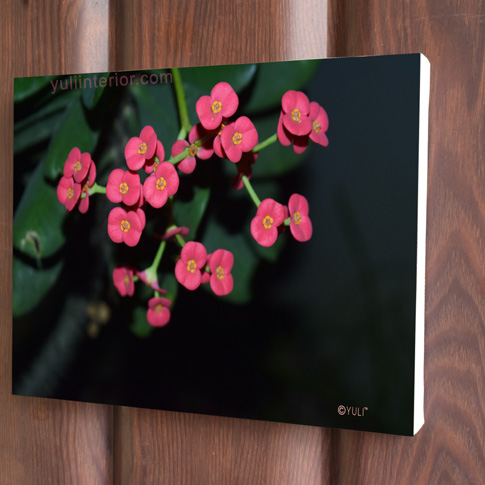 Flowers, Nature Canvas Wall Art in Port Harcourt, Nigeria