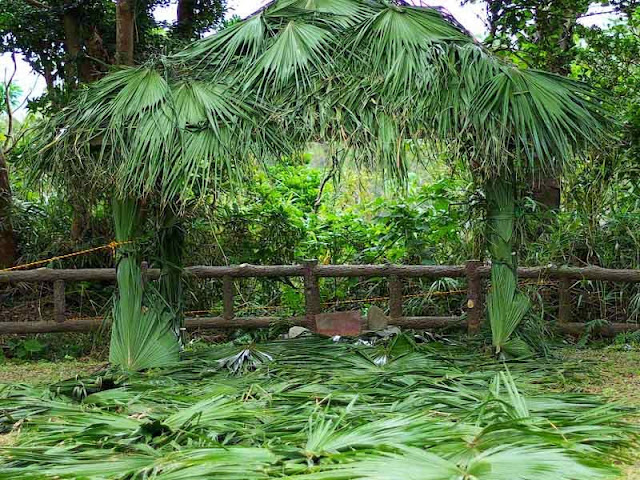 shrine dressed in greenery for ritual ceremony