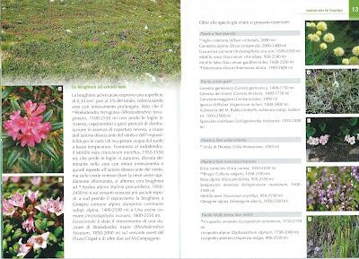 La flora della Val Sanguigno booklet example page.