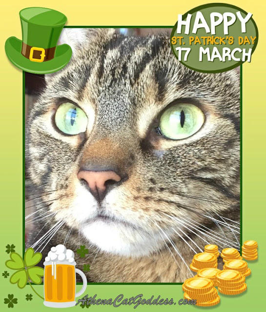 St Patrick's Day Caturday Art
