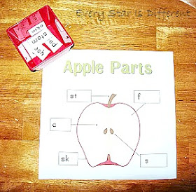 Parts of an Apple Printable