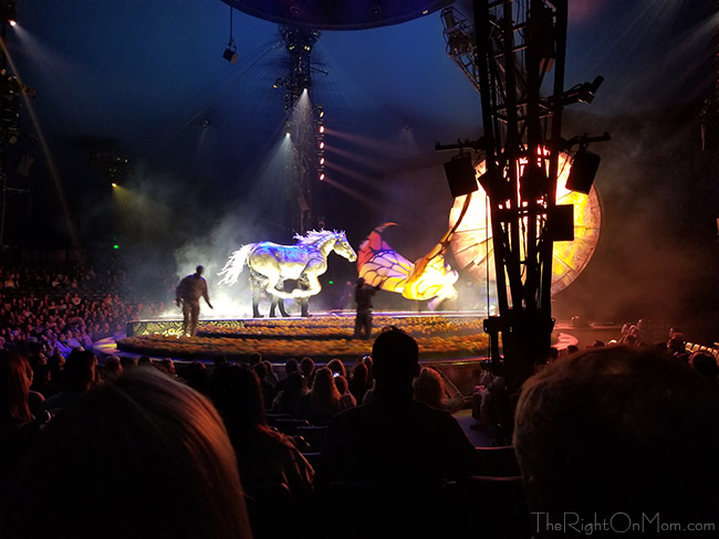 vegan mom blog cirque du soleil luzia review and discount code. Black Bedroom Furniture Sets. Home Design Ideas