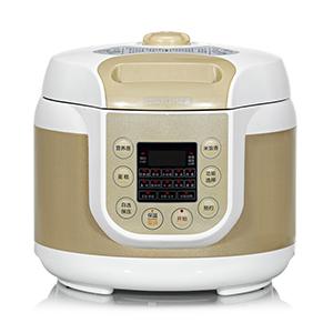 pressure cooker double bile 5L