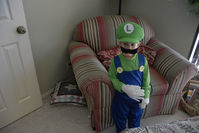 grandson wearing super mario costume: LadyD Books