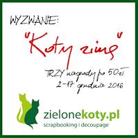 http://sklepzielonekoty.blogspot.com/2016/12/wyzwanie-koty-zima.html
