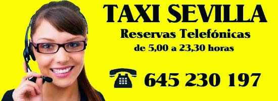 reservas taxi sevilla