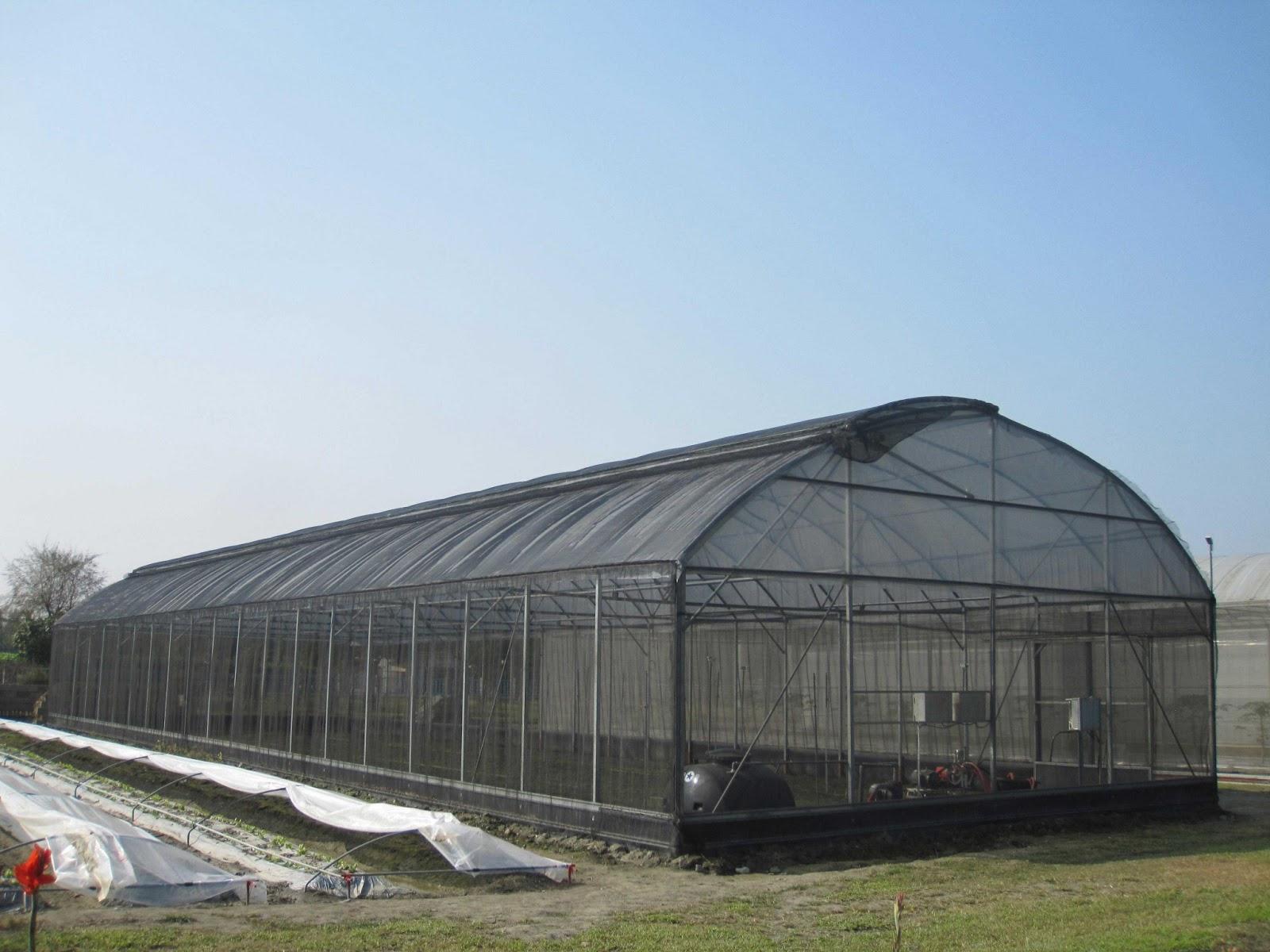Estudiando agricultura en taiw n pensando en sombra y riego for Vivero estructura