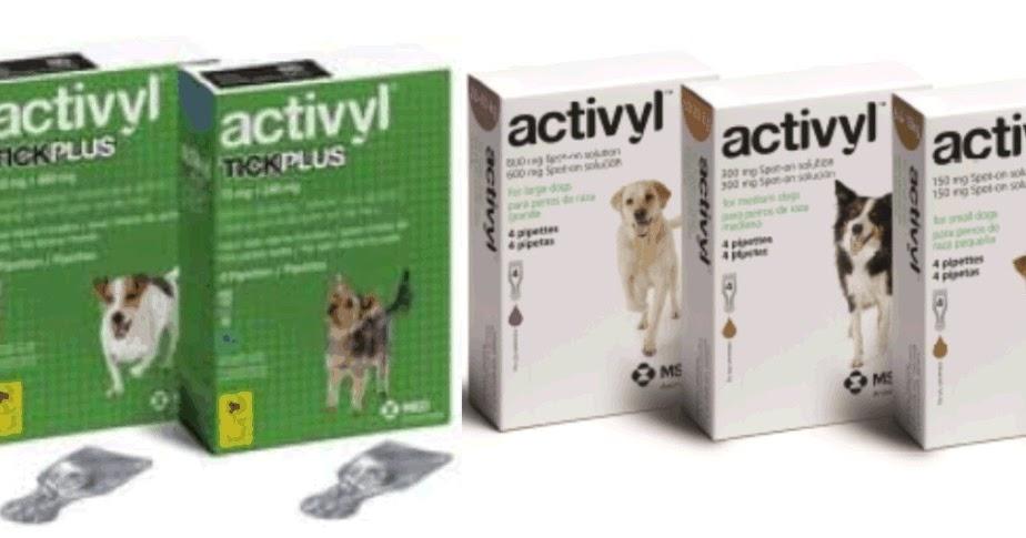 Pet Dispensary Affordable Pet Medication Introducing