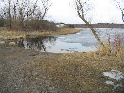 Area Lakes, Loons, Swans, and Lost Scissors at the GOMH