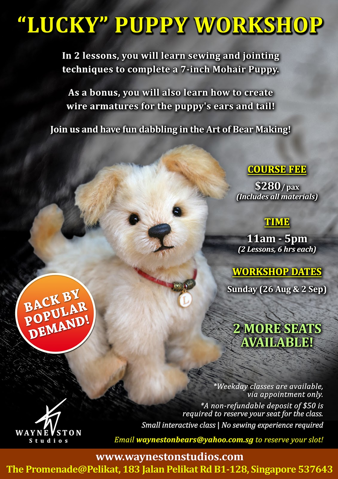 Wayneston Bears Lucky Puppy Workshop In August And News Update
