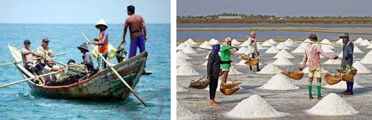 nelayan dan petani garam