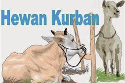 Makna memperingati Idul Adha dengan menyembelih hewan kurban