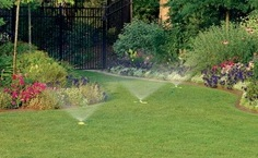 Best sprinkler head options for ground cover watering