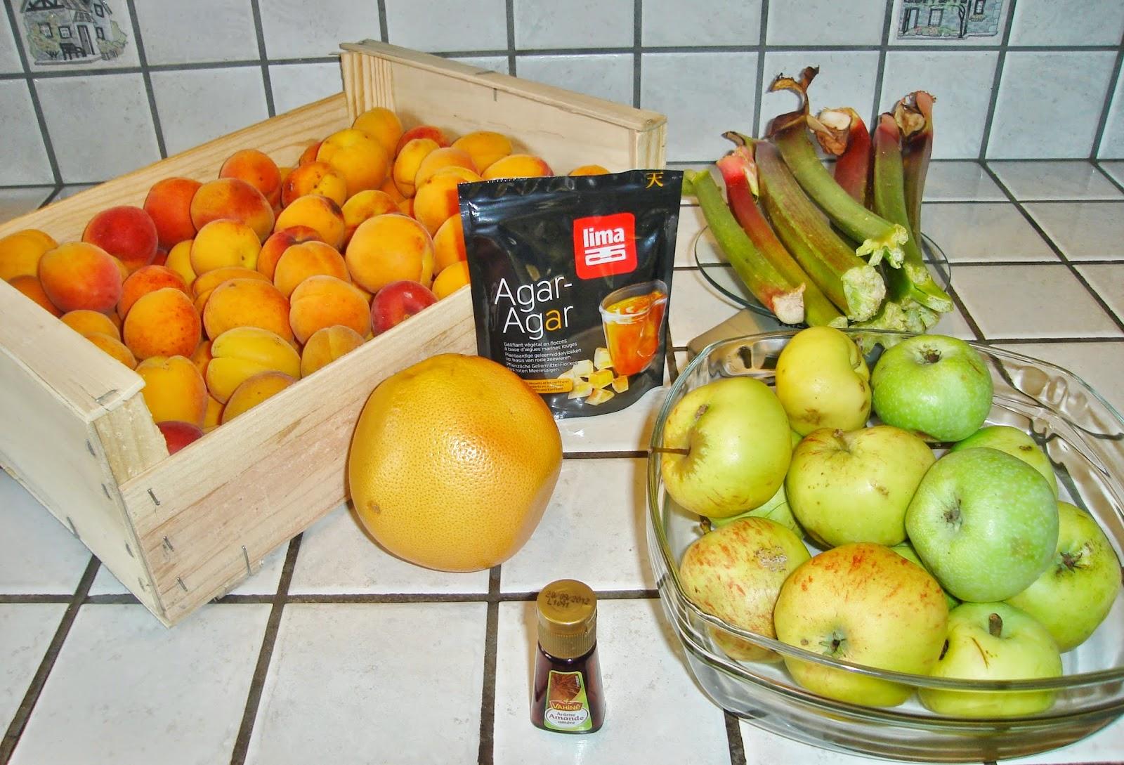 confiture abricot rhubarbe agar agar