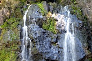 Top of the Falls, Rio Viejo