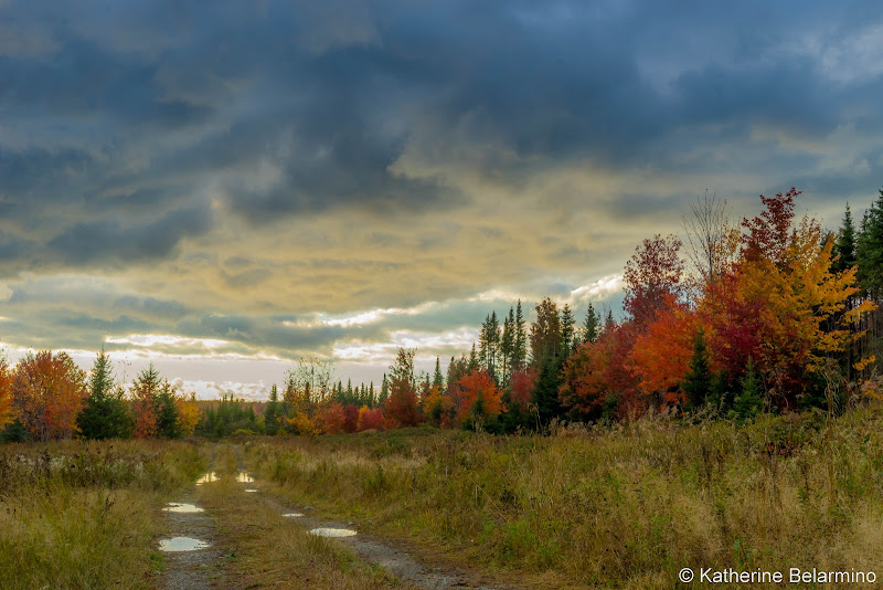 Backroad Things to Do in Moosehead Lake Maine
