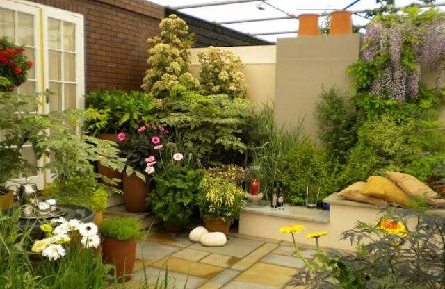 Desain Rumah Minimalis Dengan Taman Idaman - Desain Rumah Idaman