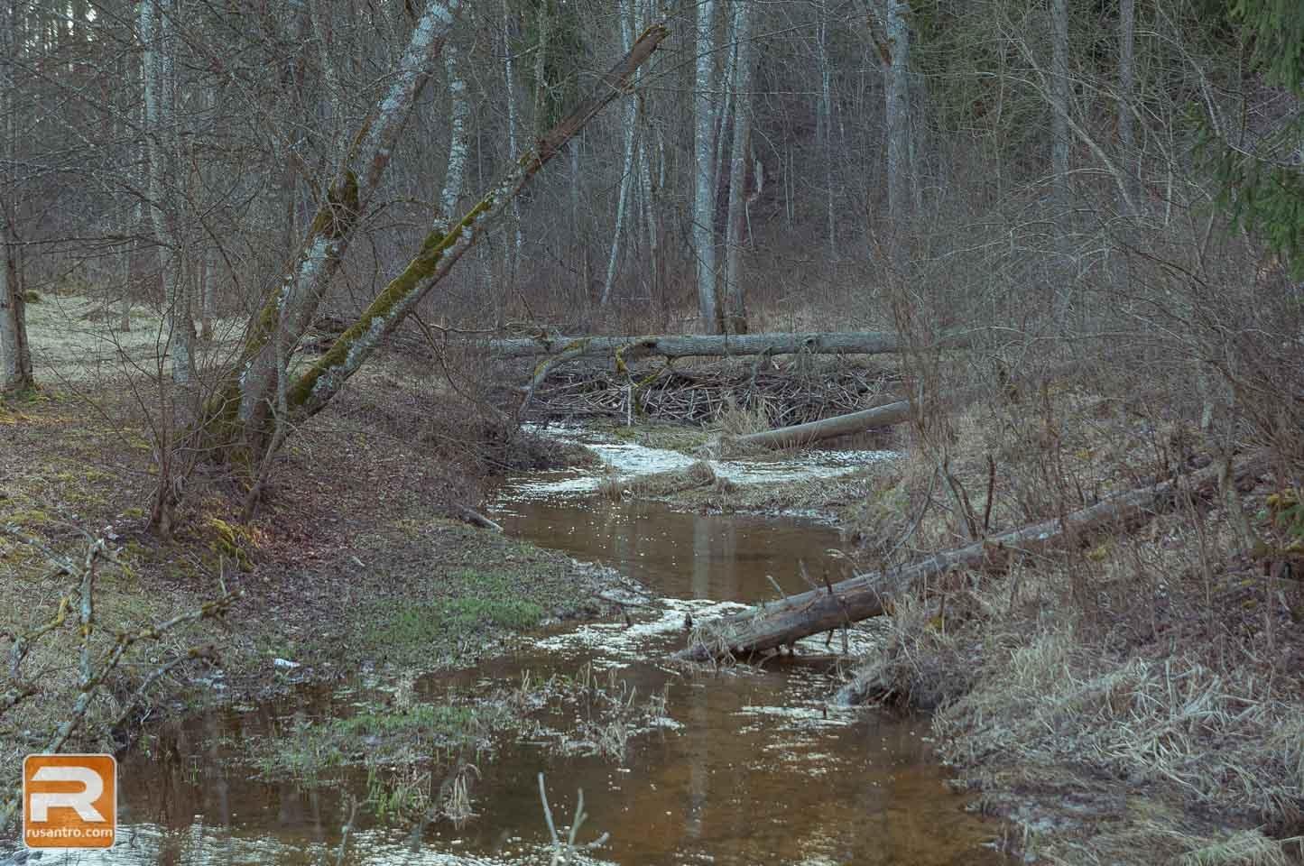 Vilces dabas parks 18