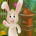 Games4King Bunny Resuce Walkthrough