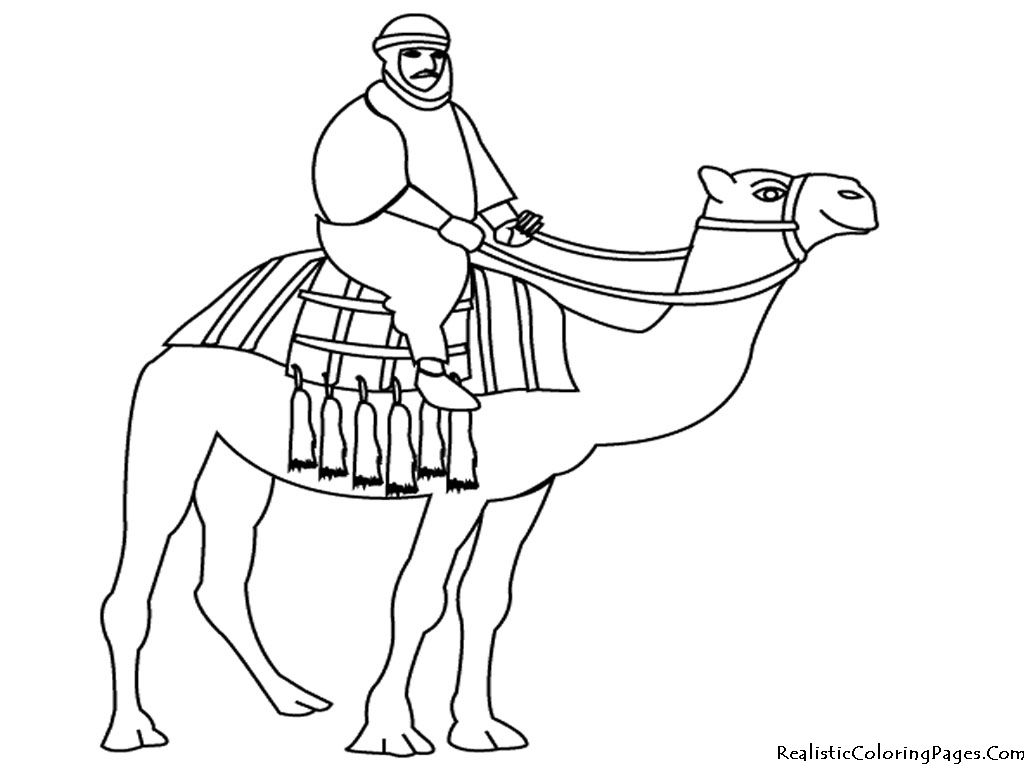 Camel Coloring Pages Realistic