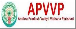 APVVP 10 Civil Assistant Vacancies Recruitment 2017