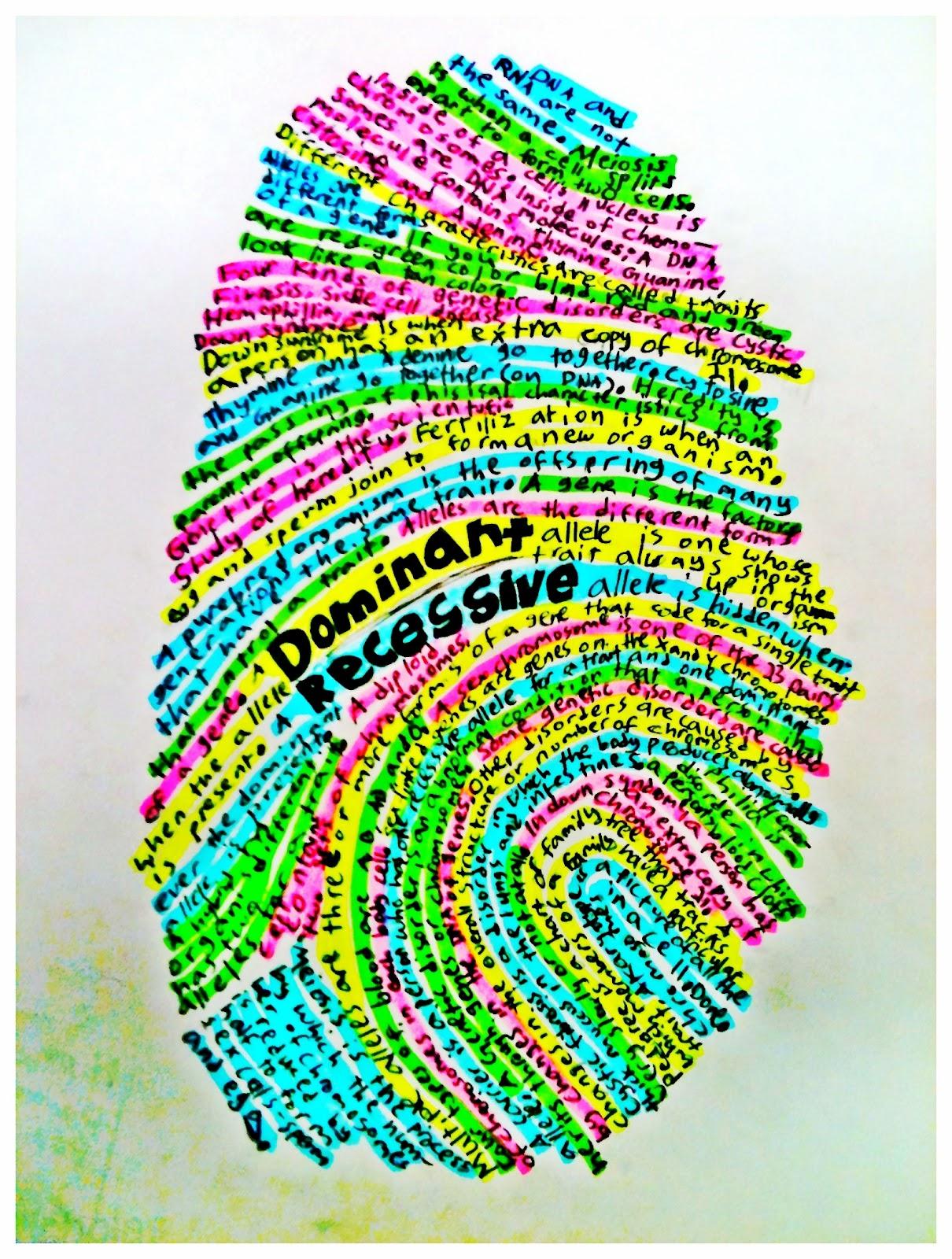 Pitotti S Panther Page Fingerprint Summaries