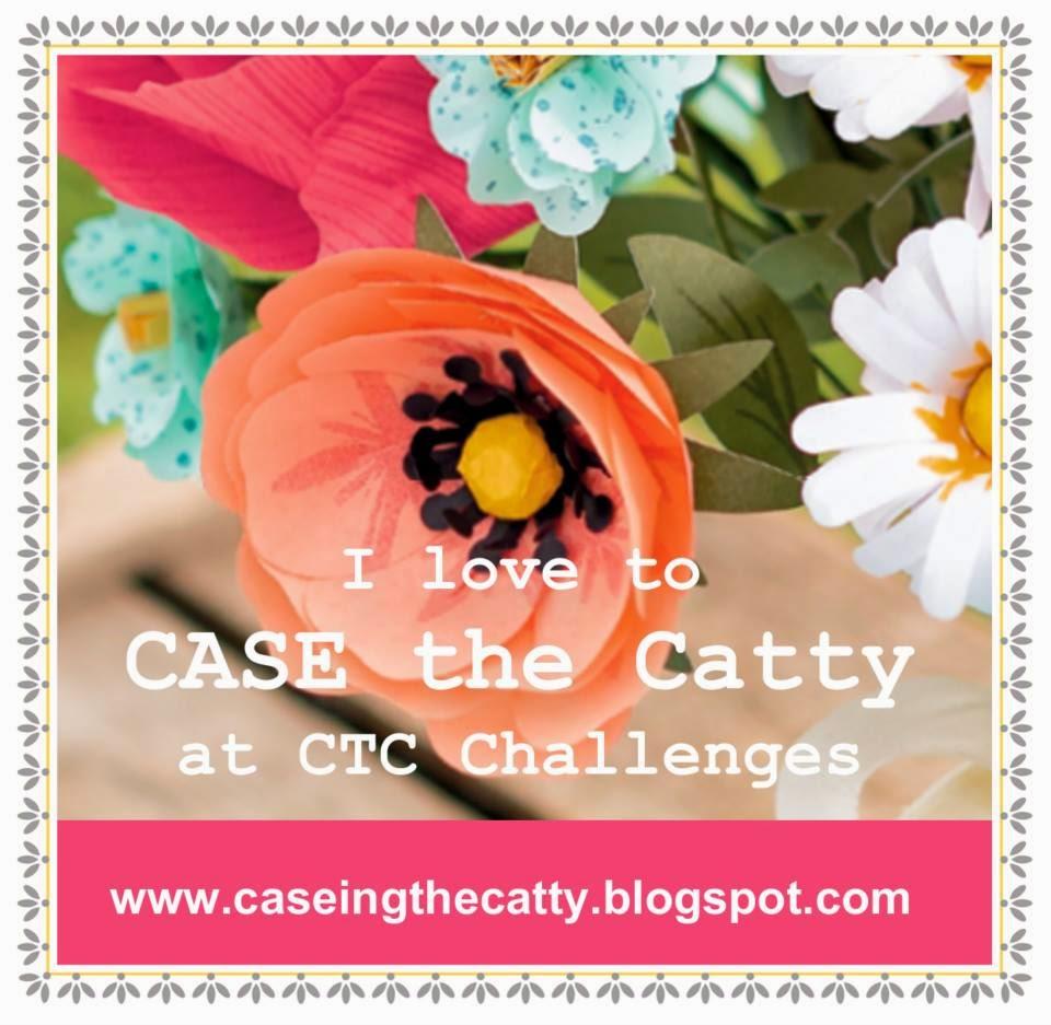 www.caseingthecatty.blogspot.com