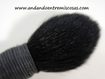 Yachiyo de pelo cabra negro, Burlesque