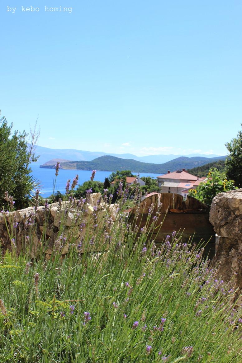 Kebo unterwegs... Kroatien, Vrbnik auf Krk, Sommerurlaub, Dorf auf Krk, Lavendel,  Reisen mit Kindern, Kebo homing, der Südtiroler Food- und Lifestyleblog