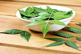 Amazing Benefits of Neem Leaves