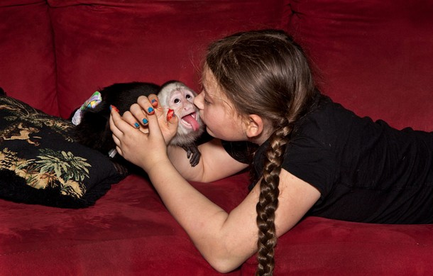Portraits of Girl With Wild Animals  Robin Schwartz