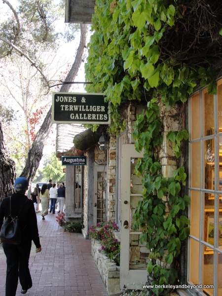 Jone & Terwilliger Galleries art gallery in Carmel, California