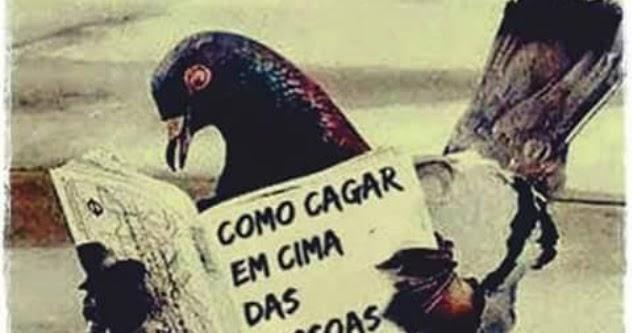 Posso Esquecer Quem Me Deixou Triste Mas Não Esqueço: SOLARIS Https://solarismgareis.blogspot.com.br