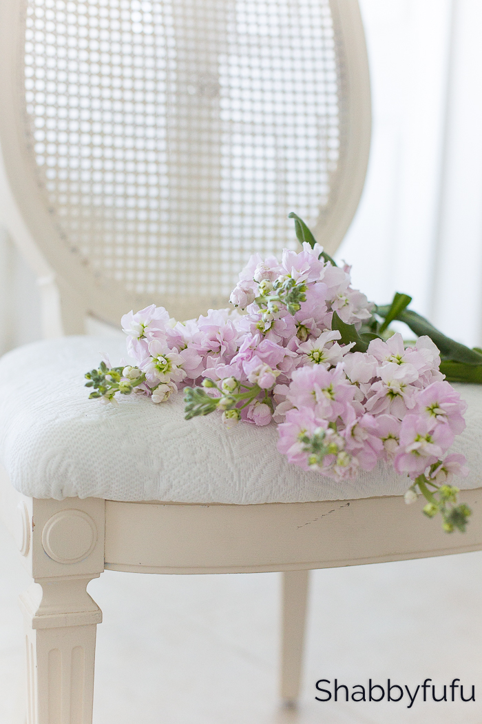 white vintage caned chair with flowers shabbyfufu