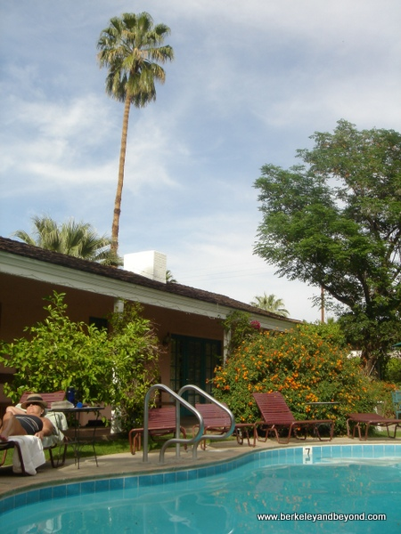 pool at Casa Cody Inn in Palm Springs, California