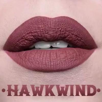 kat von d Everlasting Liquid Lipstick lip swatch hawkwind