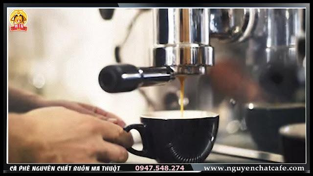 Cà phê hạt rang nguyên chất dành cho pha máy Espresso ở Buôn Ma Thuột