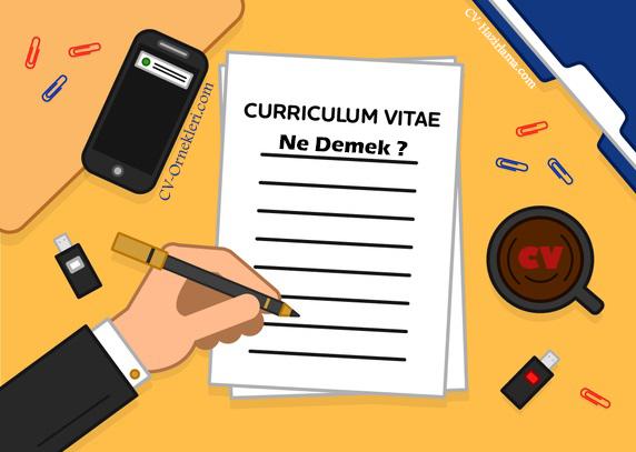 Curriculum Vitae Ne Demek ?