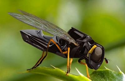 mosca manipulada electrònicamente para espionaje