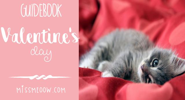 Valentine's Day guidebook