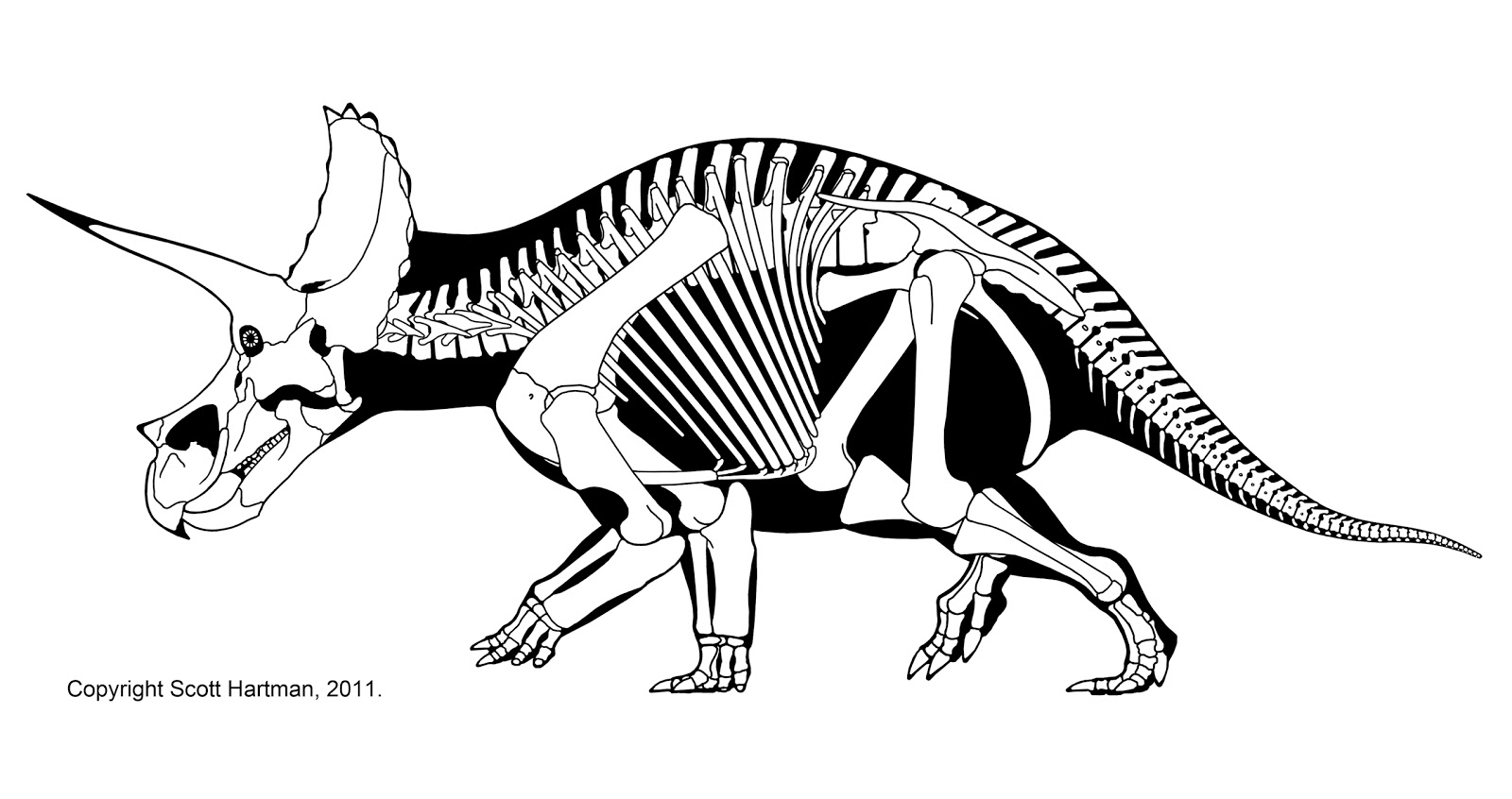 Paleo Illustrata Building A Dinosaur