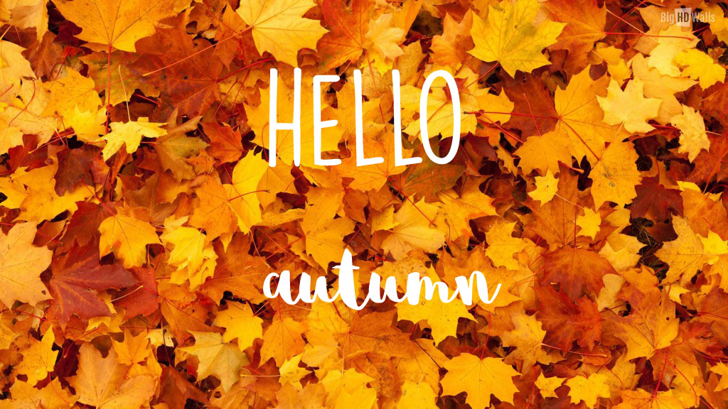 Autumn background the copper case - Fall desktop wallpaper tumblr ...