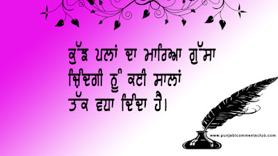 Truth Punjabi status