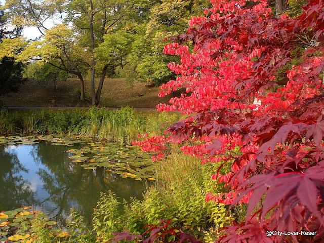 Sverige på hösten -Lund, Botaniska trädgården