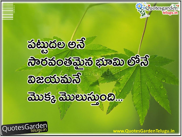 Telugu best inspirational Quotes - QGT