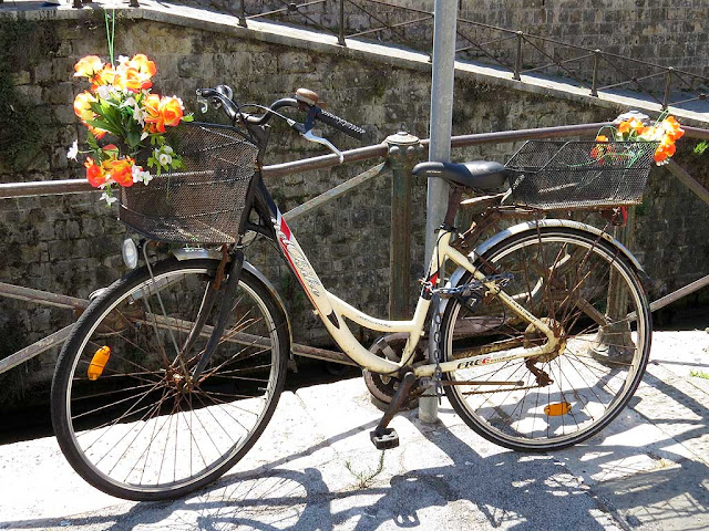 Bicycle with flowers, chained to the railing of the Fosso Reale, scali d'Azeglio, Livorno