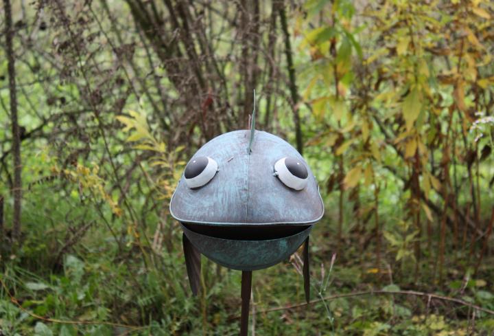 Eisenfisch im grünen Garten