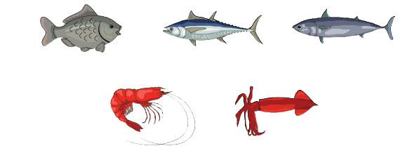 Ikan Konsumsi